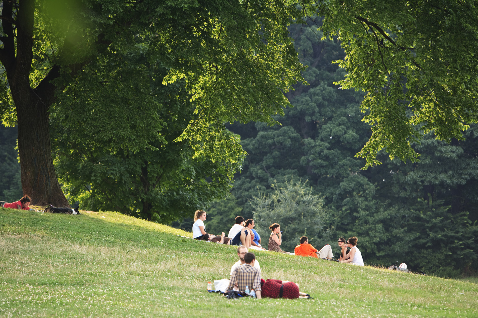 People on lawns in Prospect Park.