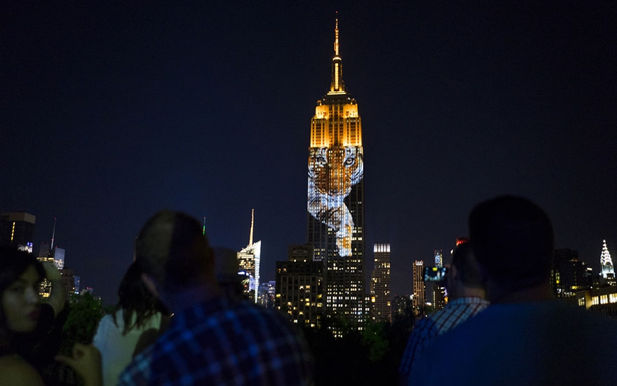 empire-state-projection-endangered-animals-nyc-19