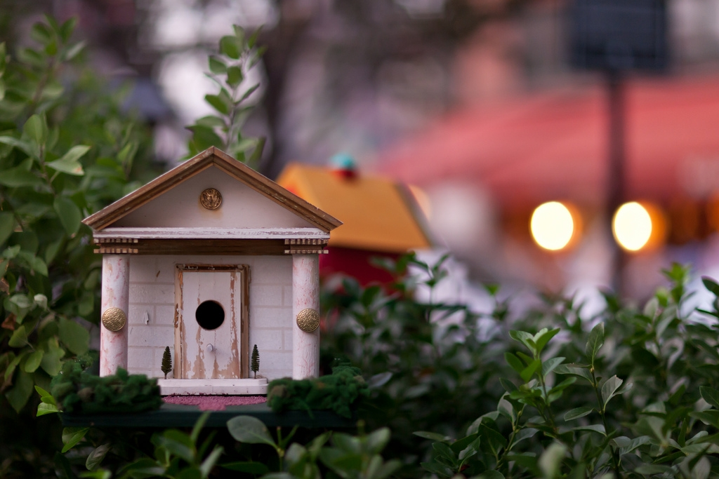 bird houses mccarthy square