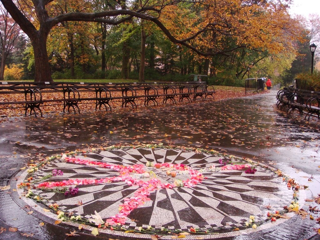 Strawberry Fields 2