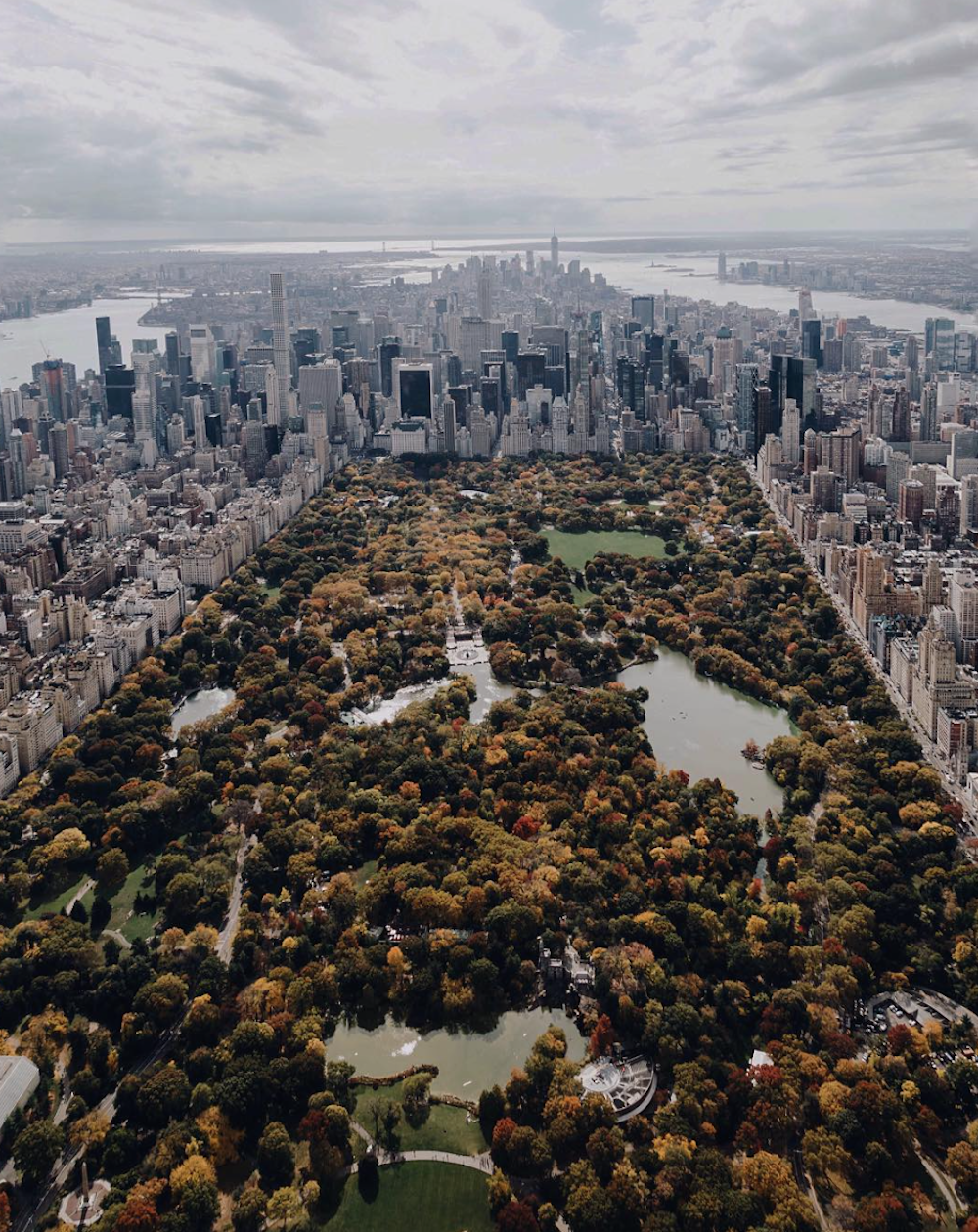 Central Park NYC Mitch Phun