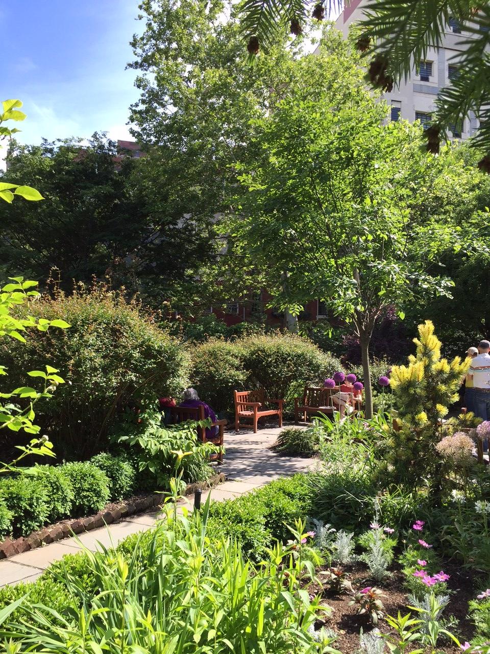Garden of St Luke in the Fields