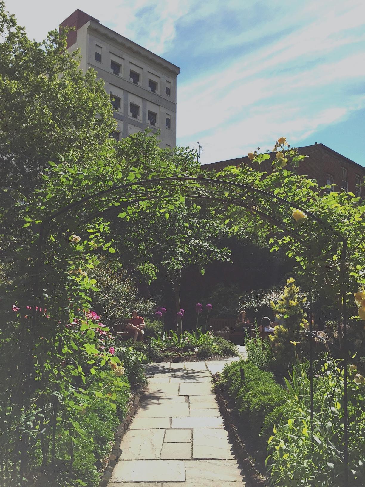 Gardens St Lukes 1