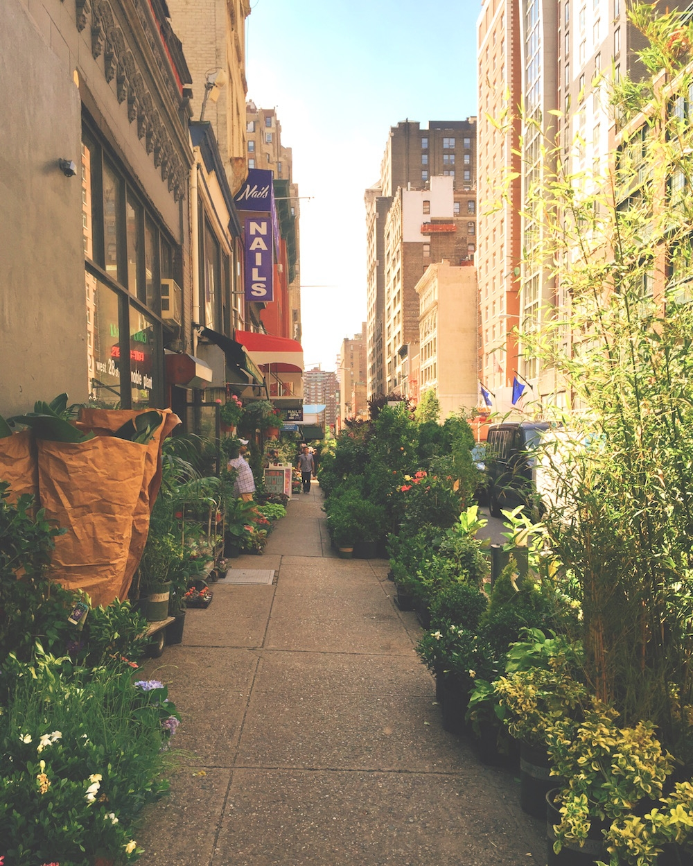 flower district new york midtown