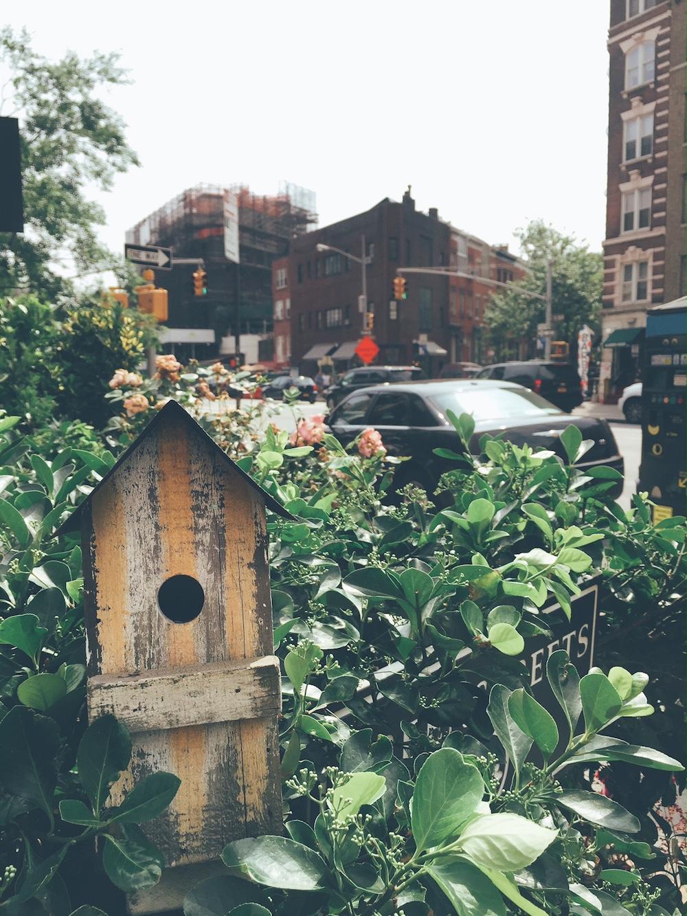 bird houses west village new york city