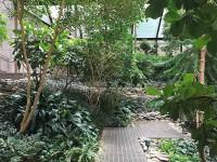 ford foundation atrium